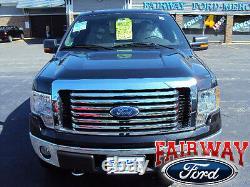 2009 thru 2014 F-150 OEM Genuine Ford Parts Chrome Billet Grille withEmblem NEW