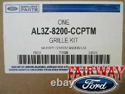 09-14 F-150 Oem D'origine Ford Fx2 Fx4 Modèle Grille De Calandre Noire Peinture À-match Nouveau